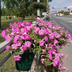 """Крепление уличного вазона для цветов """"10L"""""""